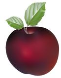 Red apple with leaf. Use your design Stock Images