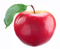 Red apple with leaf Stock Image