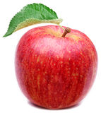 Red apple with leaf. Stock Image