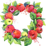 Red apple and leaves wreath. watercolor background Royalty Free Stock Photo