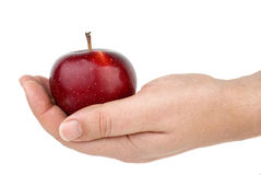 Red apple lie in palm Royalty Free Stock Photos