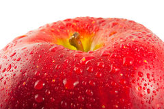Red apple, macro Royalty Free Stock Image