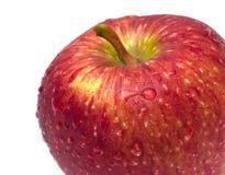 Red apple  Macro Royalty Free Stock Photo