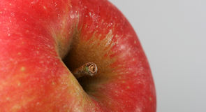 Red apple, macro Stock Photos