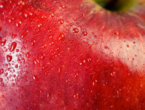 Red apple macro Stock Images
