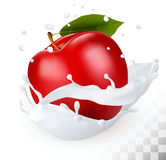 Red apple in a milk splash on a transparent background. Royalty Free Stock Images