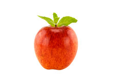 Red apple and mint leaves Royalty Free Stock Image