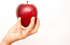 Red apple in one hand Stock Photography
