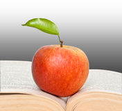 Red apple and open book Royalty Free Stock Image