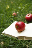 Red apple on opened book Stock Image