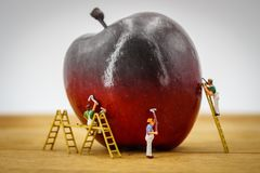 Red apple pained by painters. Miniature people Stock Photos