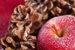 Red apple and pine cones Royalty Free Stock Photos