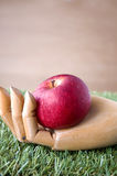 Red apple put in wooden hand Stock Photography