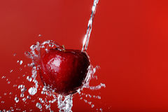 Red apple on a red background stock image