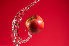 Red Apple on Red Background Stock Images