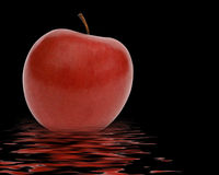 Red apple reflected Stock Photos