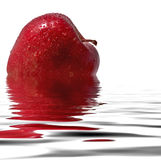 Red apple reflecting in the water royalty free stock images