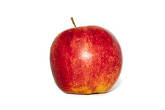 Red apple. Red ripe apple on white background stock photo