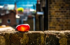 Red apple ripening on window sill. Red Apple ripening on city window sill, bricks and chimneys stock photo