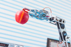 Red apple in a  robot  arm Royalty Free Stock Image