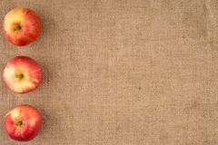 Red apple on sackcloth. Stock Image