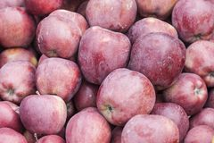 Red apple for sale in a big grocery Royalty Free Stock Image