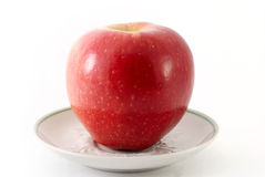 Red apple on a saucer. Isolated Stock Image