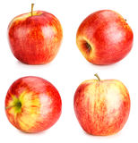 Red Apple set Stock Images