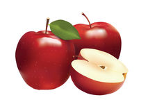Red apple and slice isolated on white photo-realistic  illustration. Stock Photos
