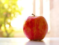 Red apple on soft background Royalty Free Stock Photography