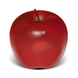 Red apple  vector Royalty Free Stock Photography