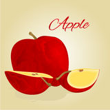 Red apple vector Royalty Free Stock Images