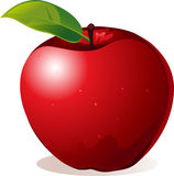 Red apple - vector illustration Royalty Free Stock Photo