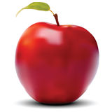 Red Apple Vector Stock Images