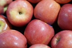 Large group of red apple. Red apple at vendor in supermarket Stock Image