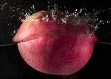 Red apple in water Stock Image