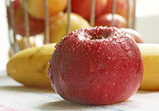 Red apple with the water drops Royalty Free Stock Images