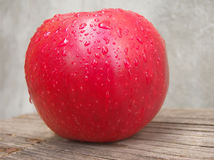 Red apple with water drops Stock Images
