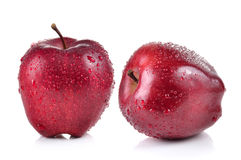 Red apple with water drops on white background Royalty Free Stock Image