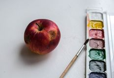 A red apple and watercolor paint and brush on white background. Red apple and watercolor paint and brush on white background stock photo