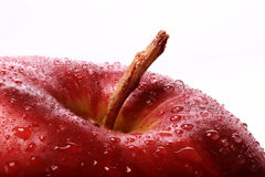 Red Apple  on white Royalty Free Stock Photography