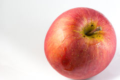 red apple white Zdjęcia Royalty Free