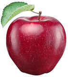 Red apple on a white background. Royalty Free Stock Photos