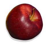 Red apple on white background Royalty Free Stock Images