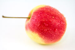 Red Apple in White Background. Red Apple with Spray Water in White Background Stock Photography