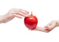Red apple between woman hands Stock Photos