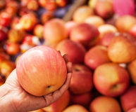 Red apple in woman hands Stock Photos