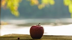 Red apple on the wooden table with blurred background, apple on the table in backyard. Red apple on the wooden table in the backyard of the lake house, apple stock image