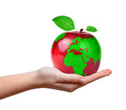 Red apple with world map in hand Royalty Free Stock Image