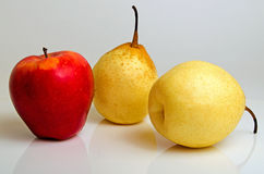 Red apple and yellow pear. Stock Photos